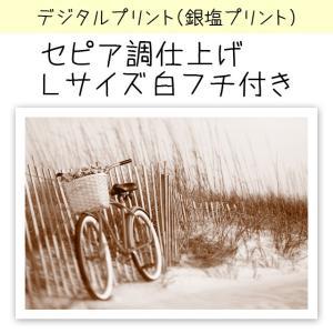 デジタルプリント(銀塩仕上げ) カラー写真をセピア色に仕上げます 印画紙サイズ:Lサイズ(12.7×...