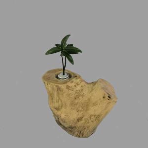 土なし 清潔 水やり簡単 奥出雲「もののけ姫」の森 木製容器 + セラハイト ナギの木 第八弾|ceraphyto-world