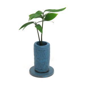 「ご神木 梛 (なぎ) の木」と「うさぎ庵特性手作り 陶製丸筒浮彫模様水盆器 皿付き」1個セット スタンドタイプ【土なし 清潔 水やり簡単 セラハイト】|ceraphyto-world