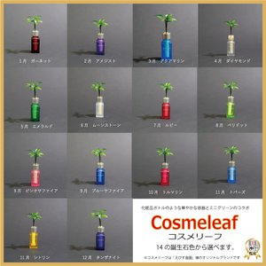 『良縁を結ぶ 梛(ナギ)の木とコスメ風容器 2個セット』 愛しい人、大切な人へのプレゼントに ボトルは14の誕生石色から選択【三週間枯れ補償】|ceraphyto-world