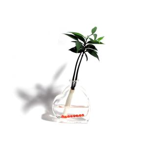 『セラハイト 良縁を結ぶご神木 梛(ナギ)の木』とハート型ガラス容器 1個セット 【プレゼント包装でお届けします】【ヤマト宅急便でお届けします】|ceraphyto-world
