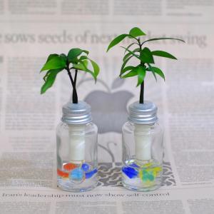 『セラハイト 良縁を結ぶご神木 梛(ナギ)の木』と 『倒れても水がこぼれない』ガラス製ミニボトル 2個セット|ceraphyto-world