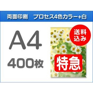 A4クリアファイル印刷【特急便】400枚|cffactory