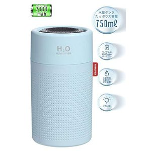【H2O】DD HUMIDIFIER 加湿器 卓上 usb充電式 2000mAh大容量 アロマディフューザー コードレス 超静音 アロマ 除菌 ペッ cgrt