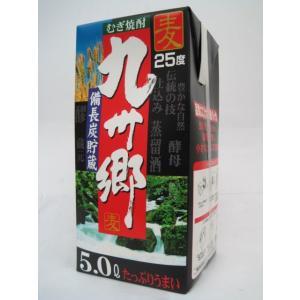いそのさわ 九州郷 備長炭貯蔵 麦焼酎 紙パック 5000ml