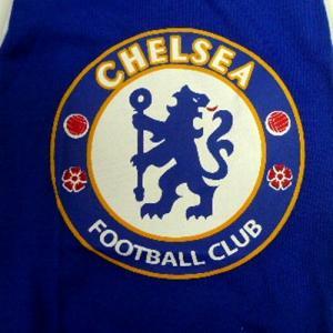 (犬服 ネコポス便)8号 Tシャツ 海外サッカーチームB  (激安 ドッグウェア Tシャツ)|chaidee-wanwan|04