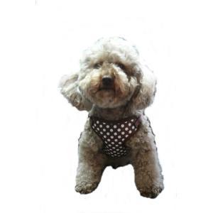【ハーネス&リード】【L:ラージサイズ】【ネコポス便】クリップタイプ ドット柄(ブラウン)【激安・着脱楽ちん・大き目小型犬〜中型犬】 chaidee-wanwan 07