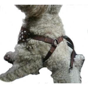 【ハーネス&リード】【L:ラージサイズ】【ネコポス便】クリップタイプ ドット柄(ブラウン)【激安・着脱楽ちん・大き目小型犬〜中型犬】 chaidee-wanwan 08