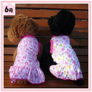 (犬服 ネコポス便)6号 ワンピ-ス・フラワーズ (激安 ドッグウェア Tシャツ) chaidee-wanwan