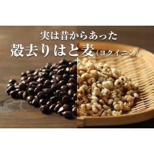 はとむぎ そのまま食べる はと麦 ハトムギ スナック 100g 送料無料 はとむみ 煎り 焙煎 美容 健康 ヨクイニン はと麦茶 はとむぎ茶 国内製造|chamise|05