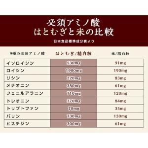 はとむぎ そのまま食べる はと麦 ハトムギ スナック 100g 送料無料 はとむみ 煎り 焙煎 美容 健康 ヨクイニン はと麦茶 はとむぎ茶 国内製造|chamise|10