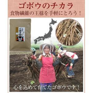 ごぼう茶 国産 3g 30包 送料無料 九州産 皮付きごぼう 遠赤焙煎 健康茶|chamise|04