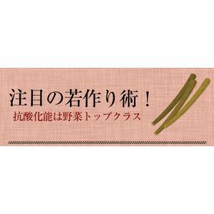 ごぼう茶 国産 3g 30包 送料無料 九州産 皮付きごぼう 遠赤焙煎 健康茶|chamise|05