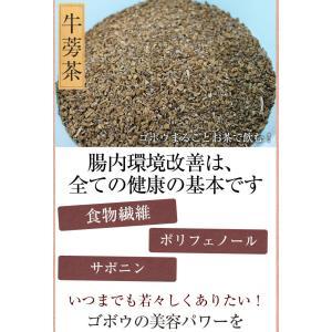 ごぼう茶 国産 3g 30包 送料無料 九州産 皮付きごぼう 遠赤焙煎 健康茶|chamise|06