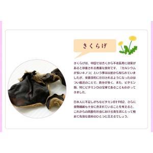 こぶりなきくらげ 55g 熊本県人吉産 乾燥 きくらげ 国産 ミニ ホール みみなば 送料無料 こぶりなきくらげ あらげきくらげ 熊本 人吉 chamise 04
