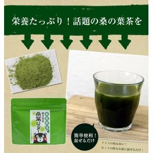 桑の葉茶 国産 粉末 50g 送料無料 桑 青汁 熊本県産 パウダー 健康茶 chamise 04