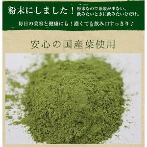 桑の葉茶 国産 粉末 50g 送料無料 桑 青汁 熊本県産 パウダー 健康茶 chamise 05
