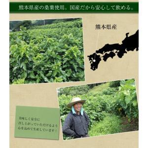 桑の葉茶 国産 粉末 50g 送料無料 桑 青汁 熊本県産 パウダー 健康茶 chamise 06