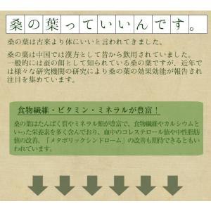 桑の葉茶 国産 粉末 50g 送料無料 桑 青汁 熊本県産 パウダー 健康茶 chamise 07