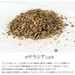 サラシア茶 ティーバッグ 3g 30包 送料無料 健康茶 サラシア|chamise|02