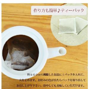 サラシア茶 ティーバッグ 3g 30包 送料無料 健康茶 サラシア|chamise|04