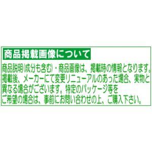 ギャツビー ひきしめシェービングジェル 205g|champion-drug|02