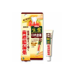 生葉口内塗薬 20g(第3類医薬品)|champion-drug