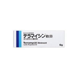 (メール便で送料無料)テラマイシン軟膏(ポリミキシンB含有)6g(第2類医薬品) champion-drug