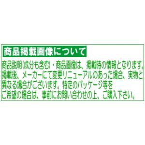 ラサーナ 海藻海泥トリートメント 詰替え用 380g champion-drug 02