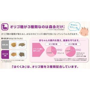 森永 エコらくパック つめかえ用 はぐくみ 800g (400g×2袋)|chan-gaba