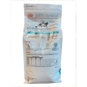 ロイヤルカナン 療法食 低分子プロテイン 猫用 ドライ 2kg|chan-gaba