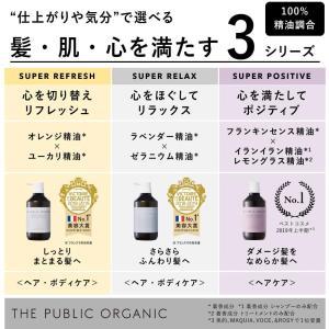 ザ パブリック オーガニック スーパー ポジティブ トリートメント (本体ボトル(500ml)) chan-gaba
