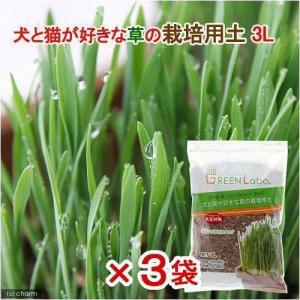 犬と猫が好きな草の栽培用土 3L 猫草 3袋入り 関東当日便|chanet