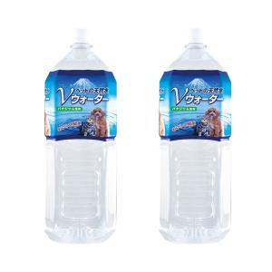 ペットの天然水 Vウォーター 2L 犬 ペットウォーター ドリンク 2本入り お一人様1点限り 関東当日便|chanet