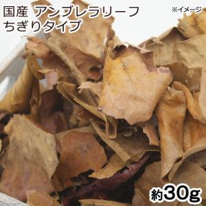 国産アンブレラリーフ ちぎりタイプ 約30g マジックリーフ(アピスト ベタ ビーシュリンプ) 関東当日便 chanet
