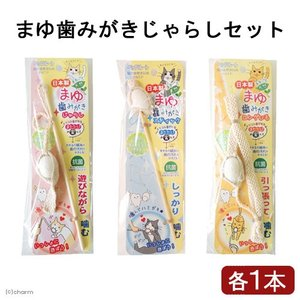 メーカー:ペッツルート 遊びながら歯磨きしよう!猫のための歯みがき玩具です。猫と遊びながら歯磨きがで...