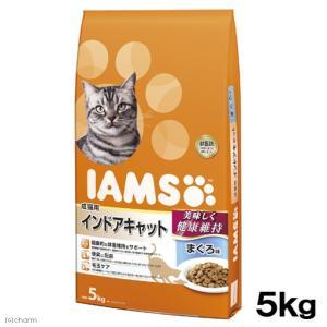 アイムス 成猫用 インドアキャット まぐろ味 5kg 関東当日便|chanet