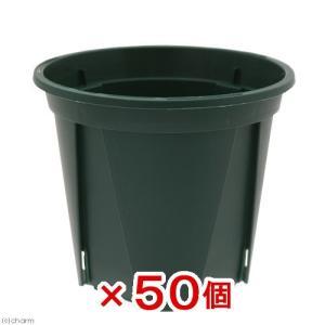 スリット鉢 EUPOT 9cm モスグリーン 50個入り 関東当日便|chanet