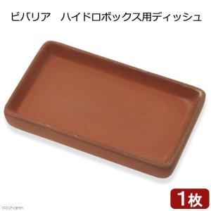 ビバリア ハイドロボックス用ディッシュ 関東当日便 chanet