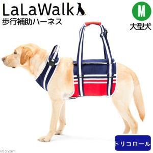 取寄せ商品 歩行補助 ハーネス LaLaWalk 大型犬用 トリコロール M ブルー 沖縄別途送料|chanet