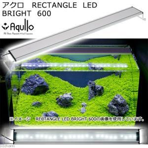 メーカー:アクロ メーカー品番:LED-R-600-W26 ▼▲ autoprice_off sfs...