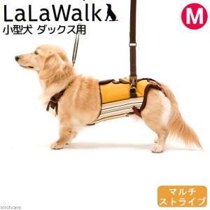 取寄せ商品 歩行補助 ハーネス LaLaWalk 小型犬 ダックス用 サポーターパッド付き M マルチストライプ 沖縄別途送料|chanet
