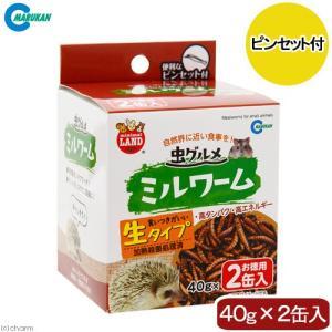 マルカン 虫グルメ ミルワーム 2缶入 関東当日便