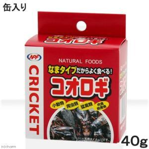 NPF コオロギ(缶入り) 40g 両生類・爬虫類 ハリネズミ フード 餌 エサ 缶詰 関東当日便