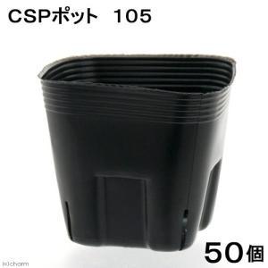 アウトレット品 ビニールポット CSPポット 3.5号 黒(スリット4・底穴無し) 50個 関東当日便 chanet