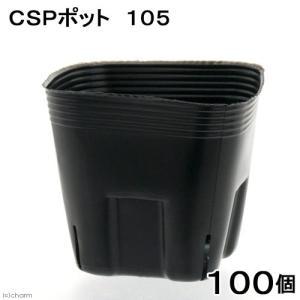 アウトレット品 CSPポット 105 黒(スリット4・底穴なし) 100個 関東当日便|chanet