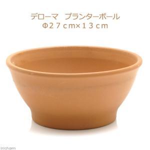 メーカー:デローマ メーカー品番:▼▲ muryotassei_800_899 _gardening...