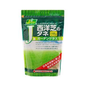 カネコ種苗 西洋芝 Jガーデングラス AM2の商品画像|ナビ