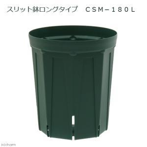 スリット鉢 ロングタイプ CSM−180L ガーデニング 鉢 バラ 果樹 家庭菜園 お一人様11点限り 関東当日便|chanet