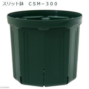 スリット鉢 CSM−300 ガーデニング 鉢 お一人様5点限り 関東当日便|chanet